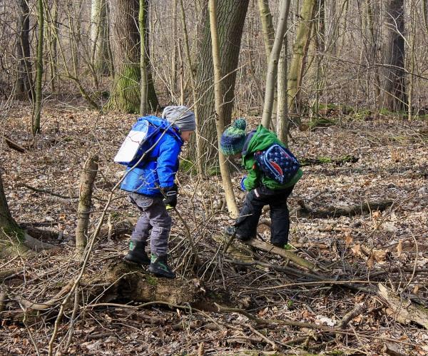 Kinder klettern im Wald