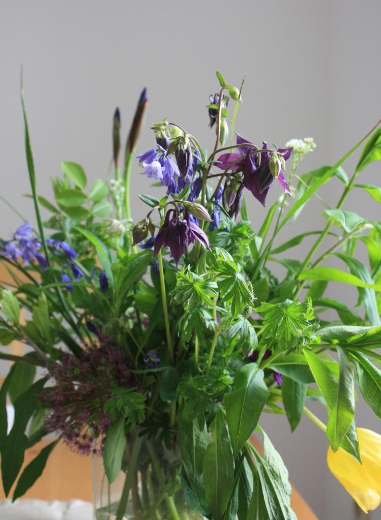 Blumenstrauß mit Akelei