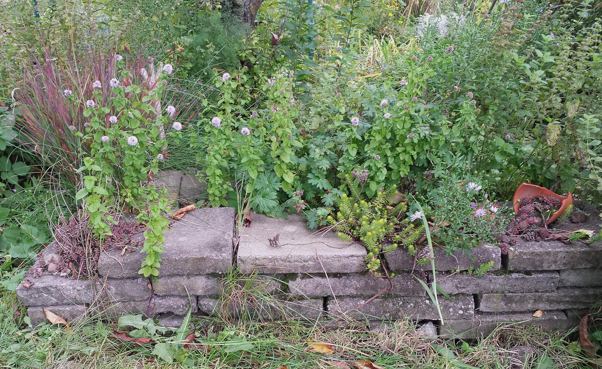 betonsteinmauer