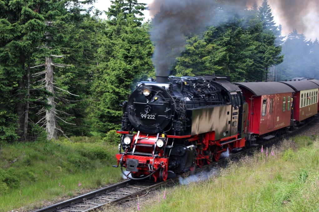 Harzurlaub (83) Brockenwanderung